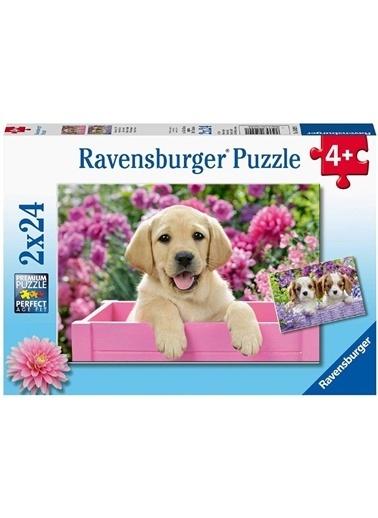Ravensburger 2x24 Puzzle Friends RPK050291 Renkli